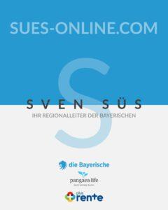 sues-online.com Logo